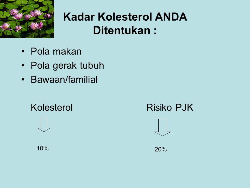 Kadar Kolesterol ANDA Ditentukan :