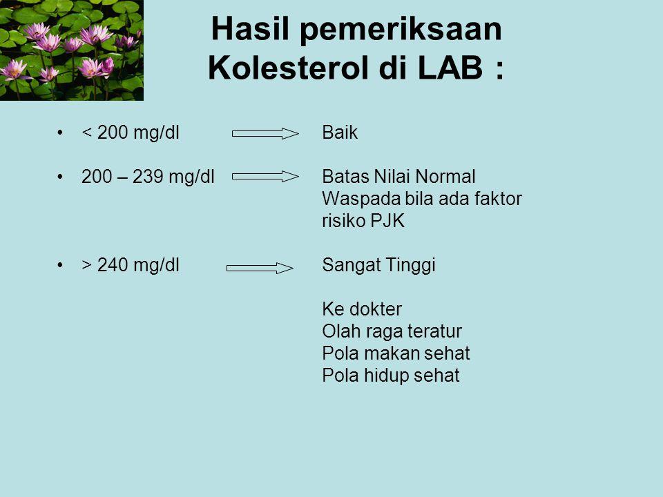 Hasil pemeriksaan Kolesterol di LAB :