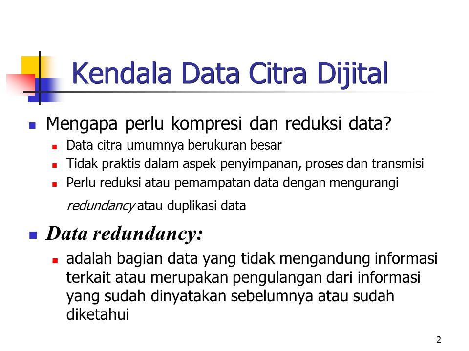 Kendala Data Citra Dijital