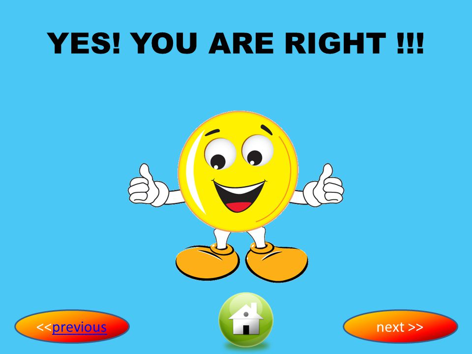 YES! YOU ARE RIGHT !!! <<previous next >>