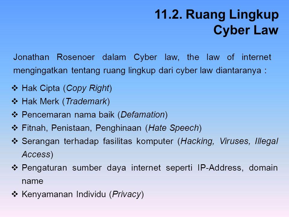 11.2. Ruang Lingkup Cyber Law