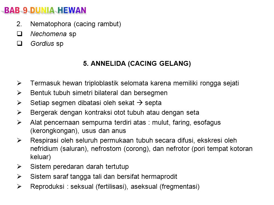 5. ANNELIDA (CACING GELANG)