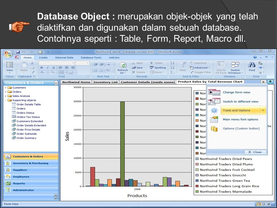 Database Object : merupakan objek-objek yang telah diaktifkan dan digunakan dalam sebuah database.