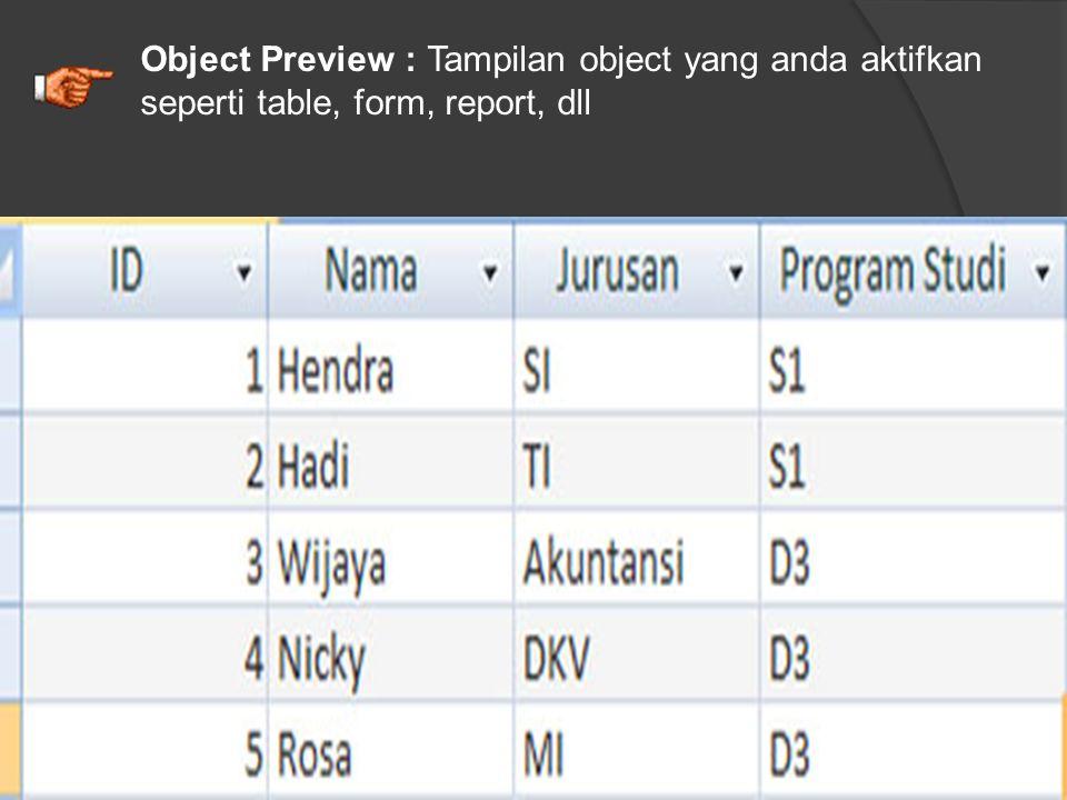 Object Preview : Tampilan object yang anda aktifkan seperti table, form, report, dll