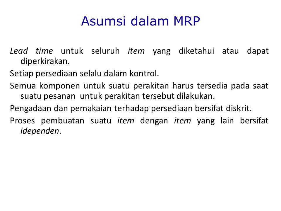 Asumsi dalam MRP