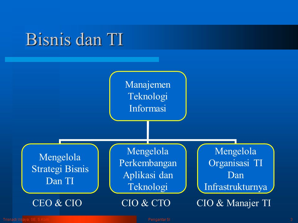 Bisnis dan TI CEO & CIO CIO & CTO CIO & Manajer TI