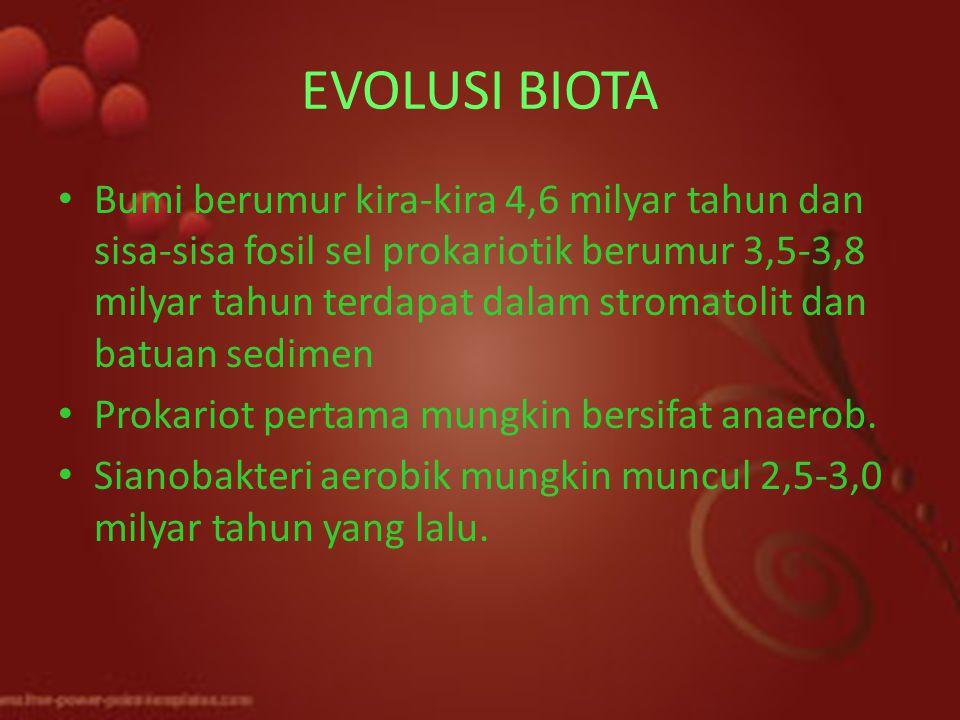EVOLUSI BIOTA