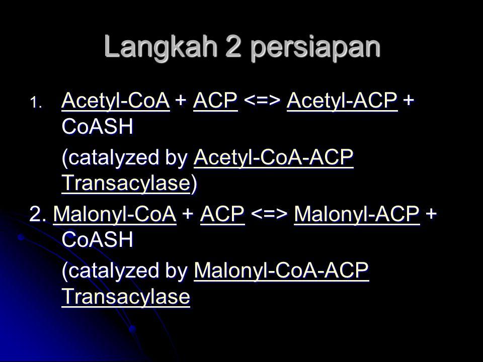 Langkah 2 persiapan Acetyl-CoA + ACP <=> Acetyl-ACP + CoASH