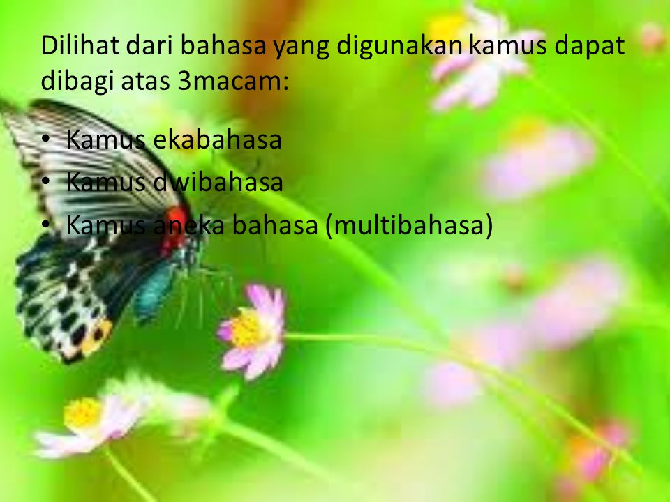 Dilihat dari bahasa yang digunakan kamus dapat dibagi atas 3macam: