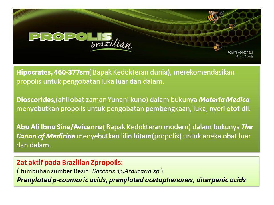 Zat aktif pada Brazilian Zpropolis: