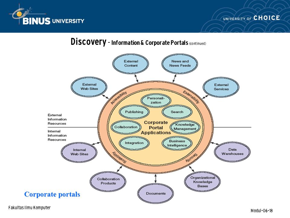 Discovery - Information & Corporate Portals (continued)