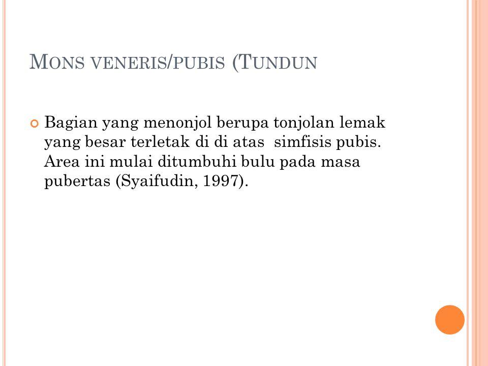 Mons veneris/pubis (Tundun