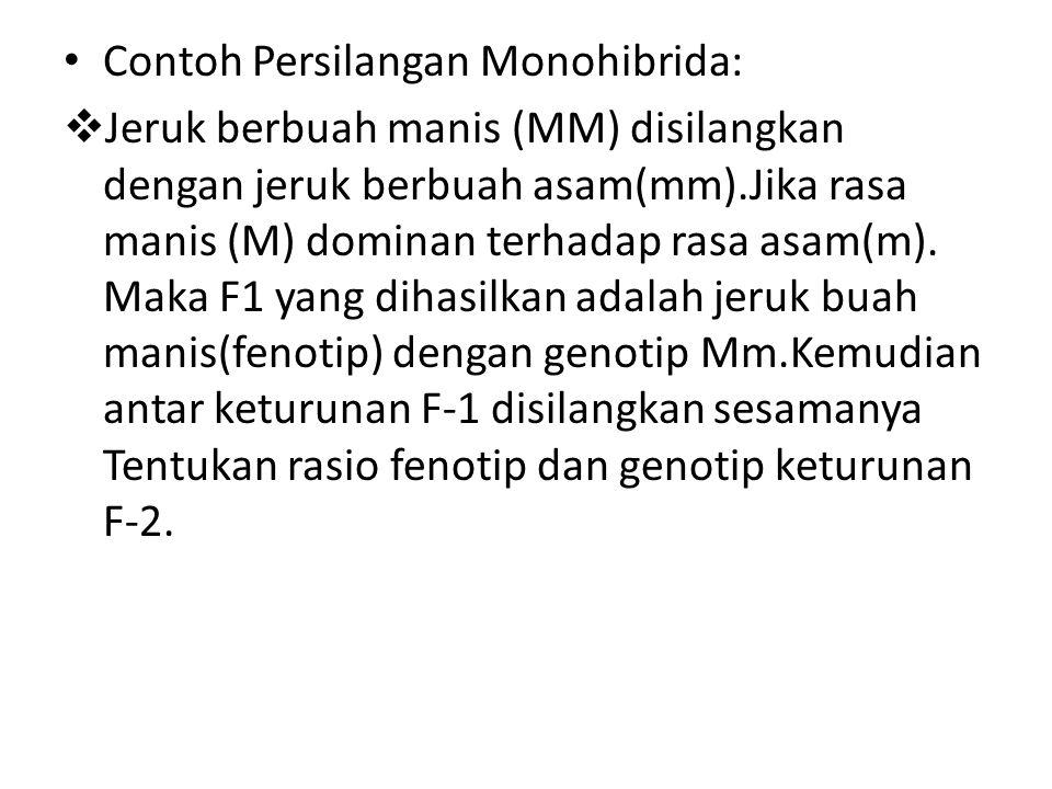 Contoh Persilangan Monohibrida: