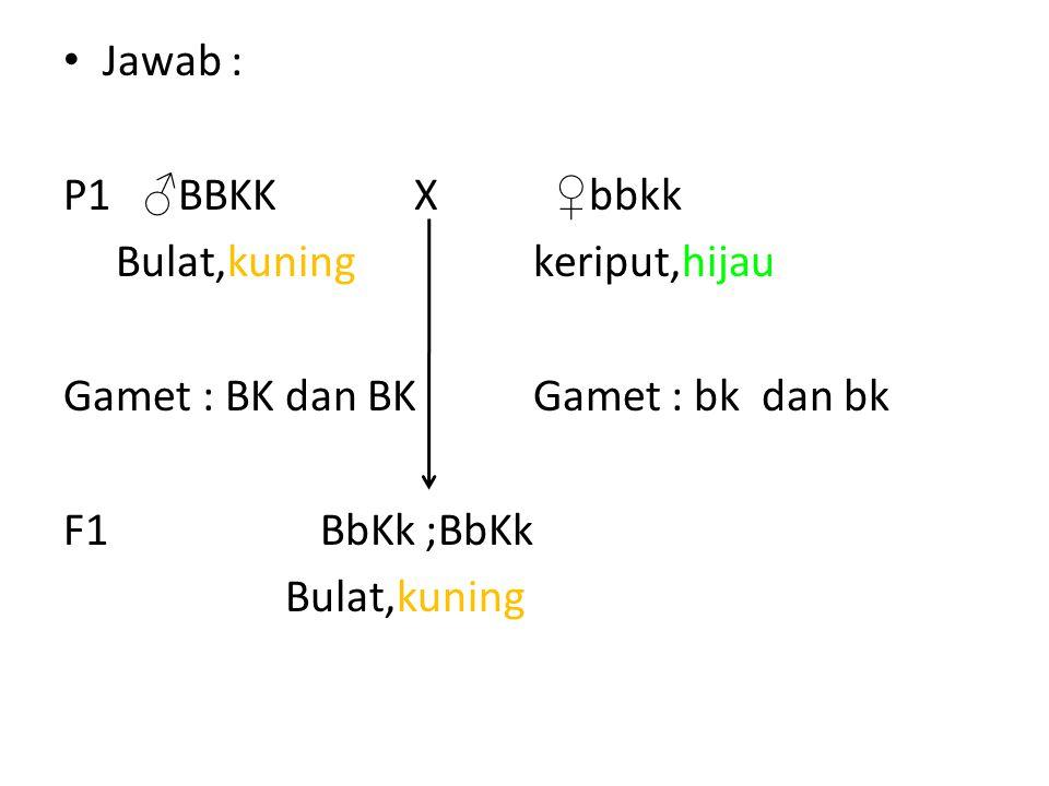 Jawab : P1 ♂BBKK X ♀bbkk. Bulat,kuning keriput,hijau. Gamet : BK dan BK Gamet : bk dan bk.