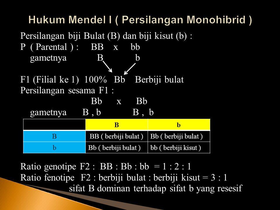 Hukum Mendel I ( Persilangan Monohibrid )