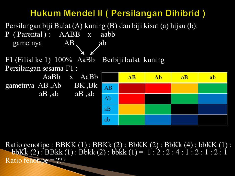 Hukum Mendel II ( Persilangan Dihibrid )
