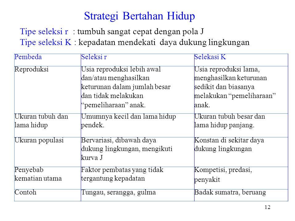 Strategi Bertahan Hidup