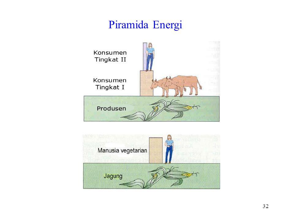 Piramida Energi 32