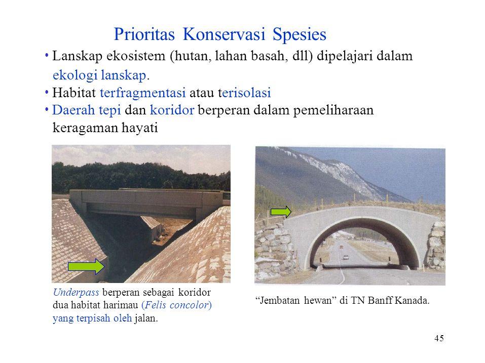 • Lanskap ekosistem (hutan, lahan basah, dll) dipelajari dalam
