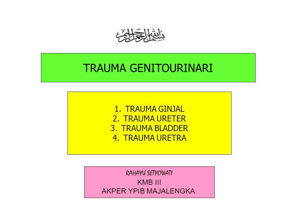 genitourinary trauma/nsu3062/rsetyowati