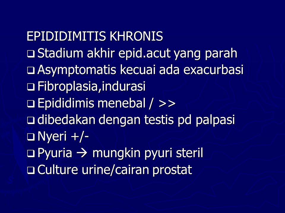 EPIDIDIMITIS KHRONIS Stadium akhir epid.acut yang parah. Asymptomatis kecuai ada exacurbasi. Fibroplasia,indurasi.
