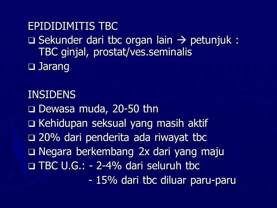 EPIDIDIMITIS TBC Sekunder dari tbc organ lain  petunjuk : TBC ginjal, prostat/ves.seminalis. Jarang.
