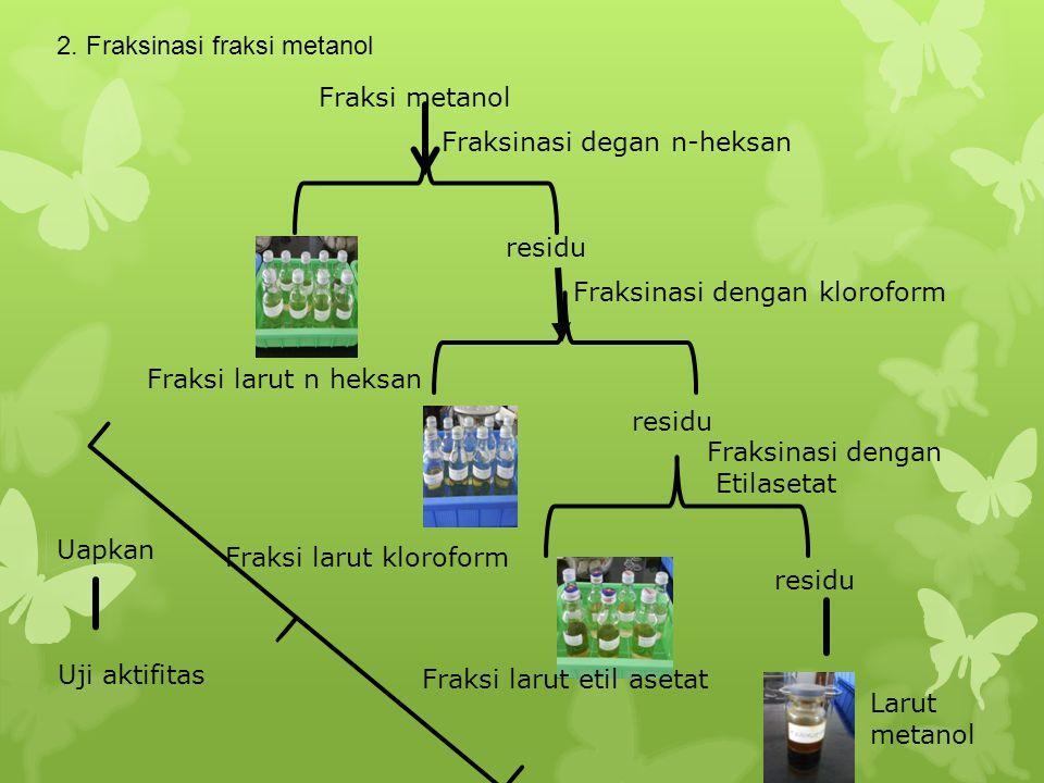 2. Fraksinasi fraksi metanol