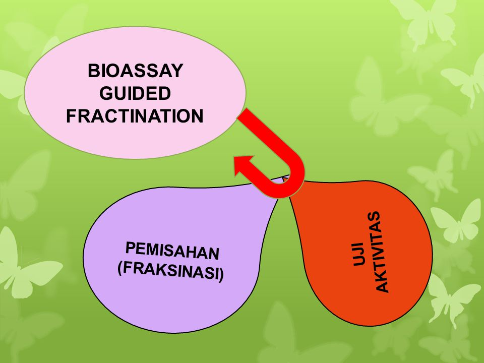 BIOASSAY GUIDED FRACTINATION PEMISAHAN (FRAKSINASI)