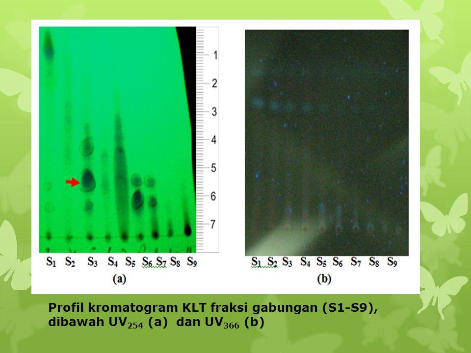 Profil kromatogram KLT fraksi gabungan (S1-S9), dibawah UV254 (a) dan UV366 (b)