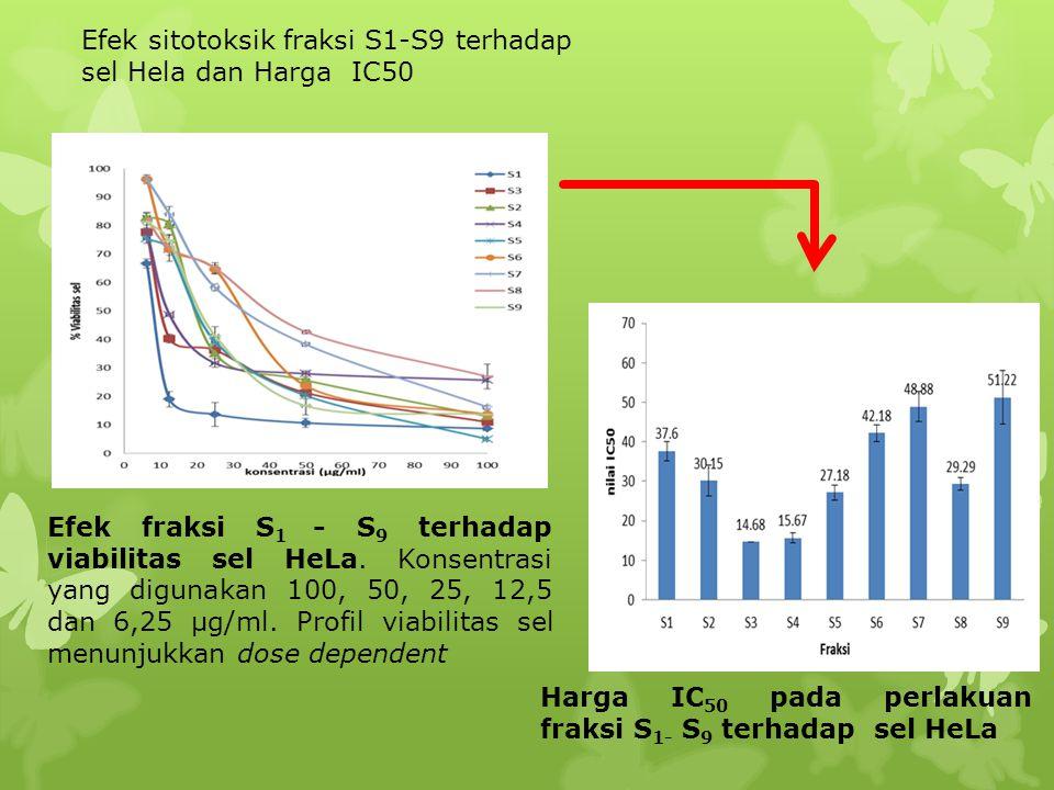 Efek sitotoksik fraksi S1-S9 terhadap sel Hela dan Harga IC50