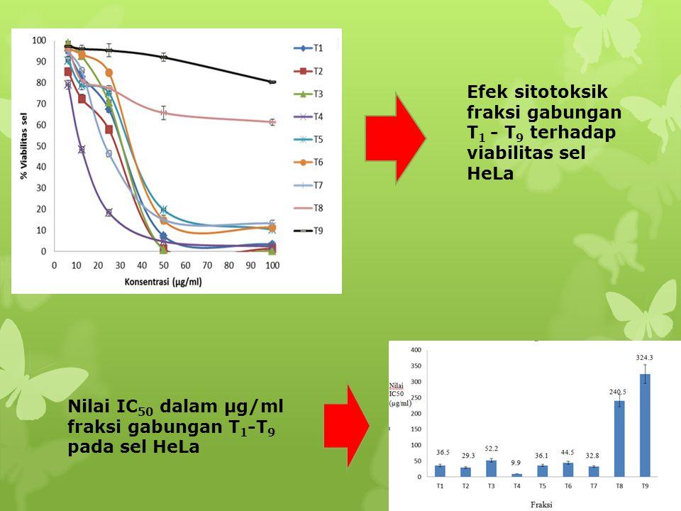 Efek sitotoksik fraksi gabungan T1 - T9 terhadap viabilitas sel HeLa