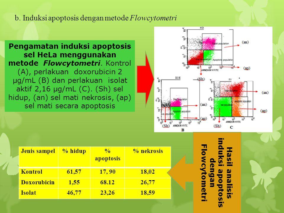 Hasil analisis induksi apoptosis dengan Flowcytometri