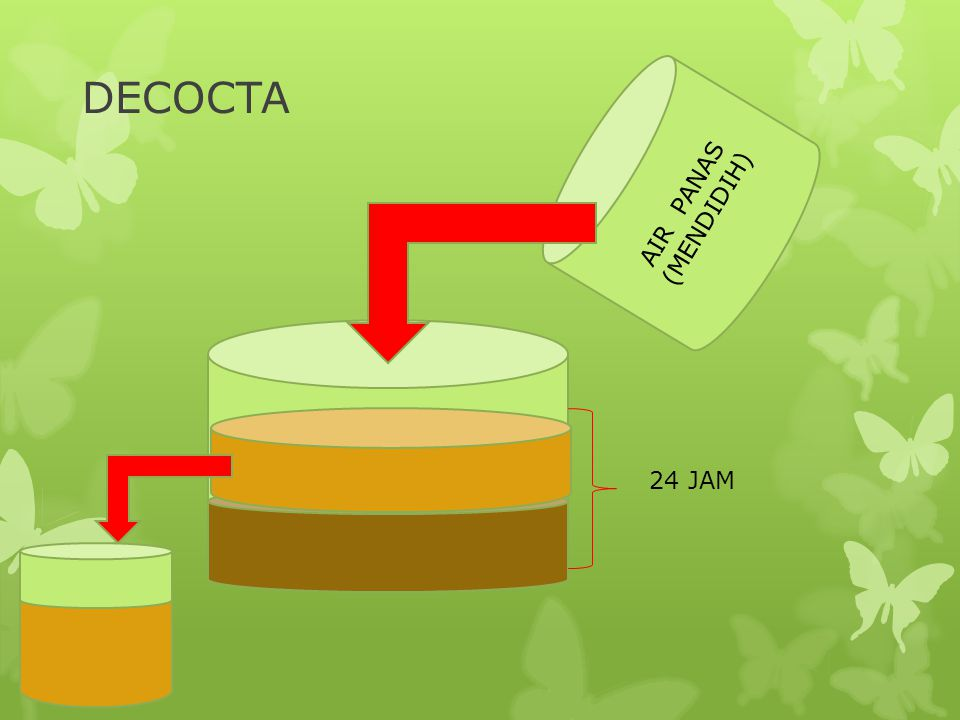 DECOCTA AIR PANAS (MENDIDIH) 24 JAM