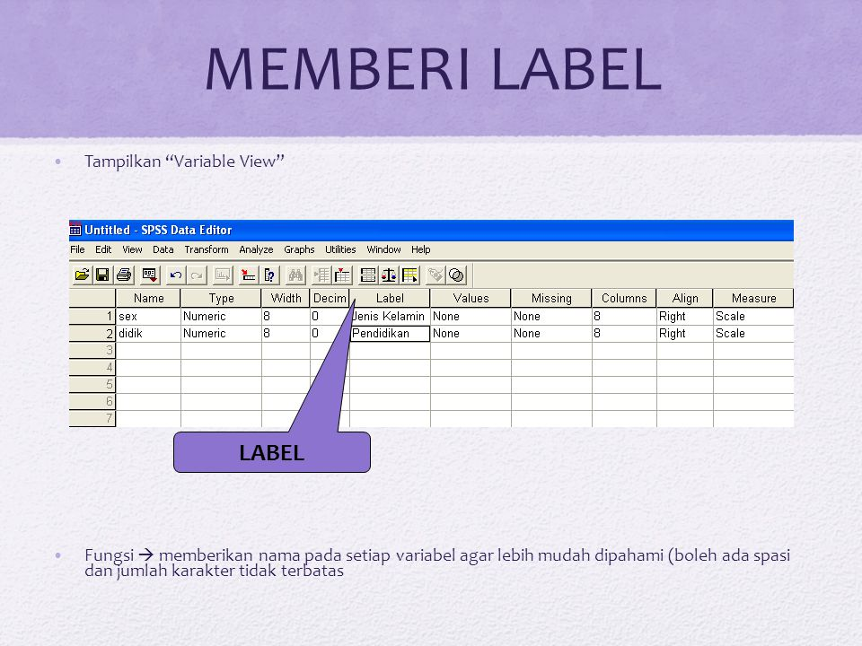 MEMBERI LABEL LABEL Tampilkan Variable View