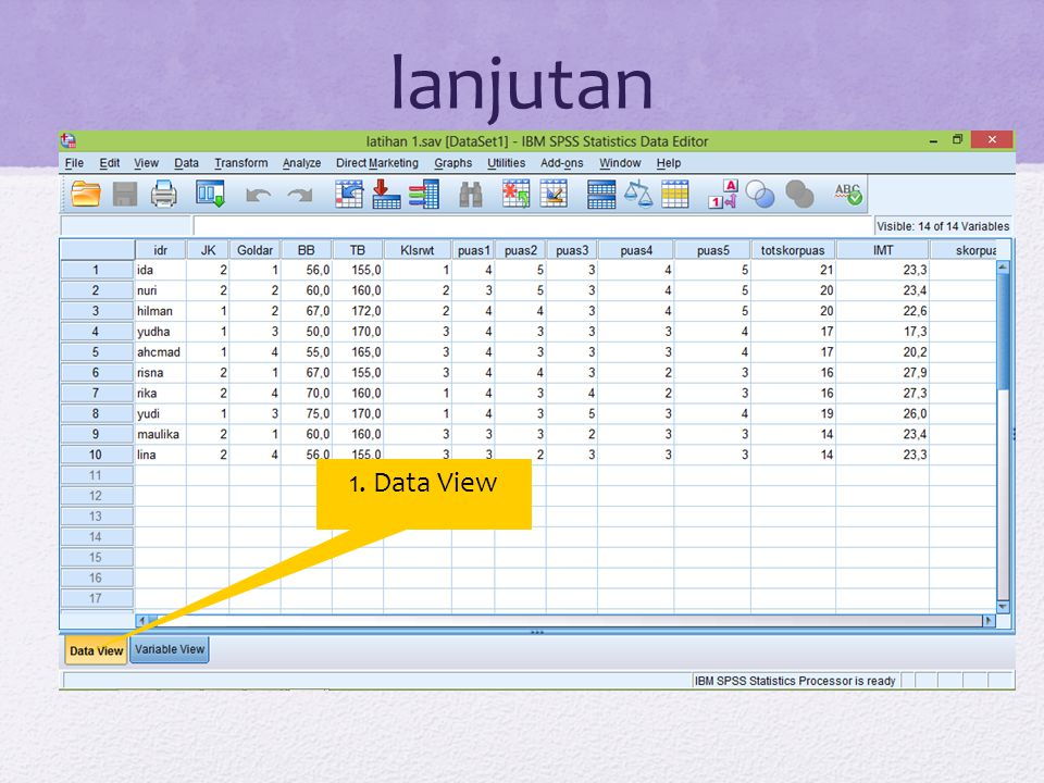 lanjutan 1. Data View