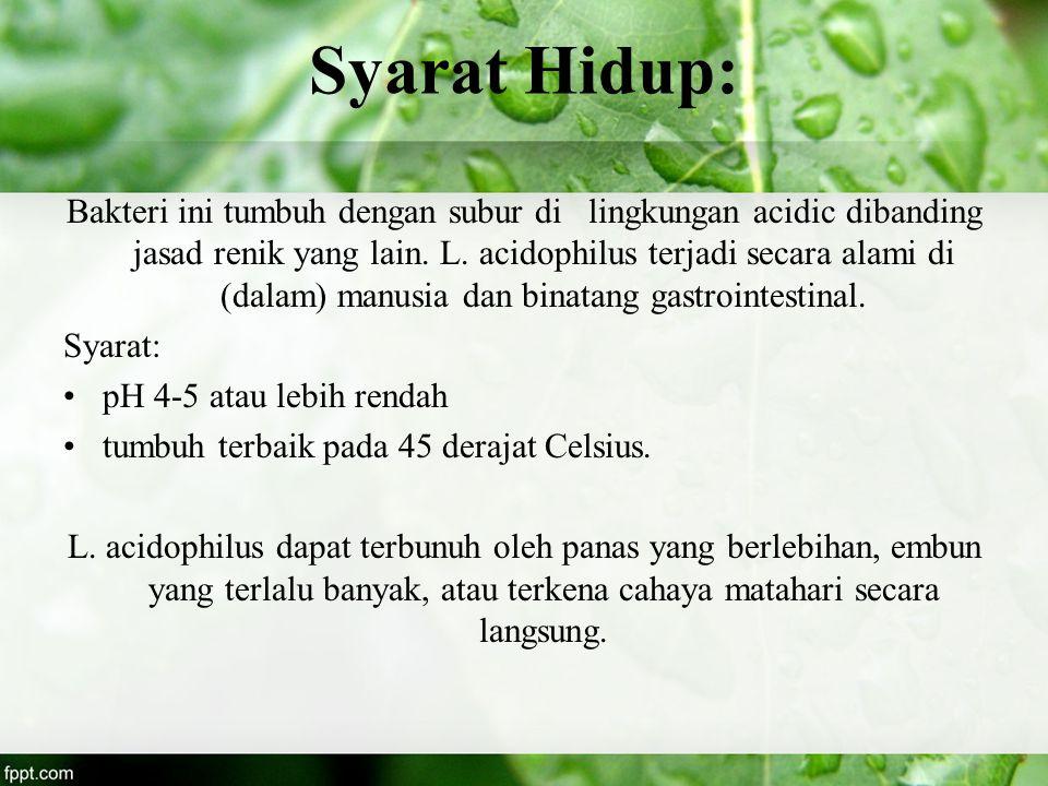 Syarat Hidup: