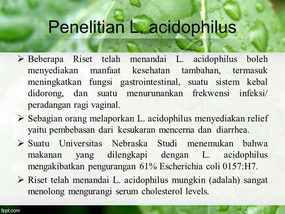 Penelitian L. acidophilus