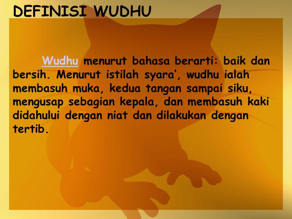 DEFINISI WUDHU
