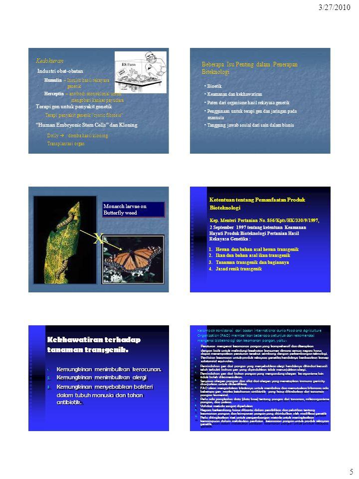 X 3/27/2010 5 Kekhawatiran terhadap tanaman transgenik. Kedokteran