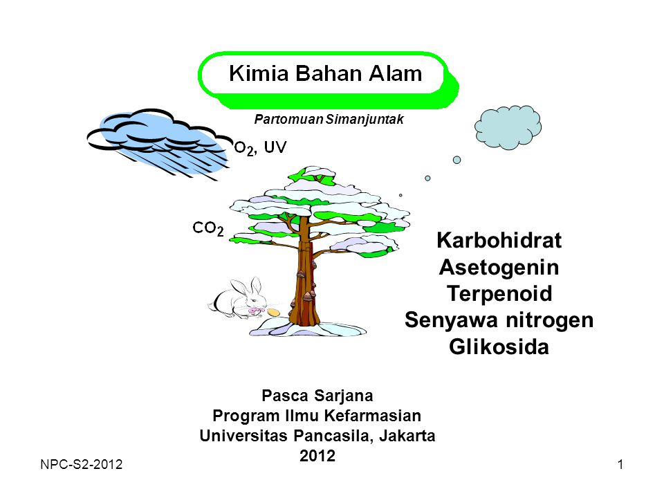 Karbohidrat Asetogenin Terpenoid Senyawa nitrogen Glikosida