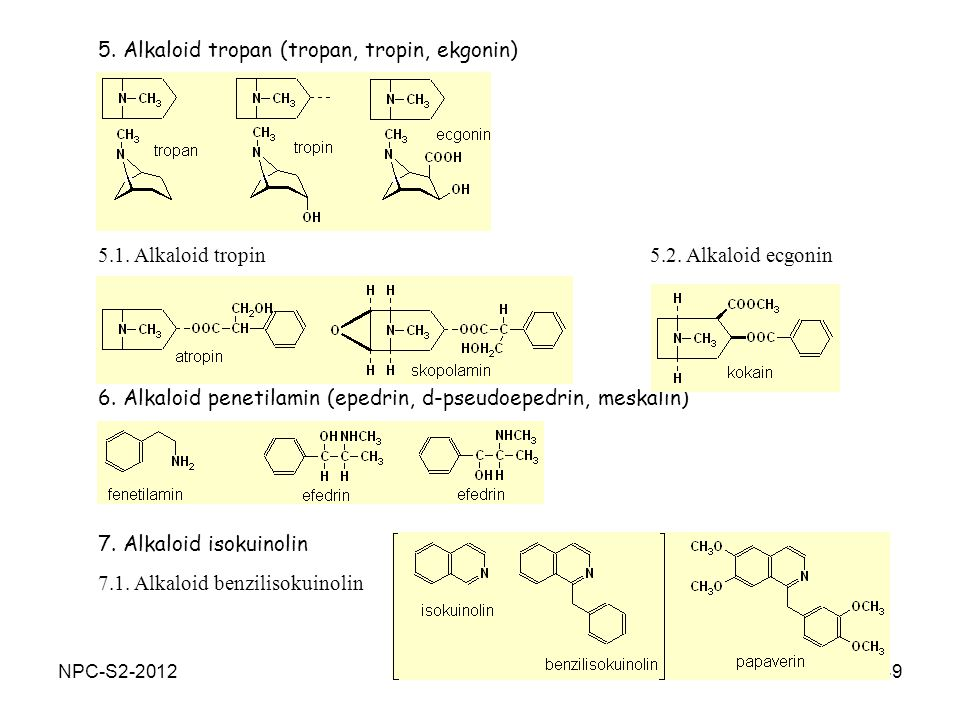 5. Alkaloid tropan (tropan, tropin, ekgonin)