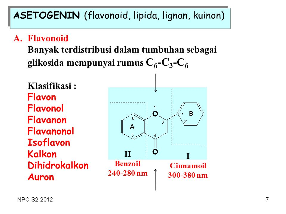 ASETOGENIN (flavonoid, lipida, lignan, kuinon)