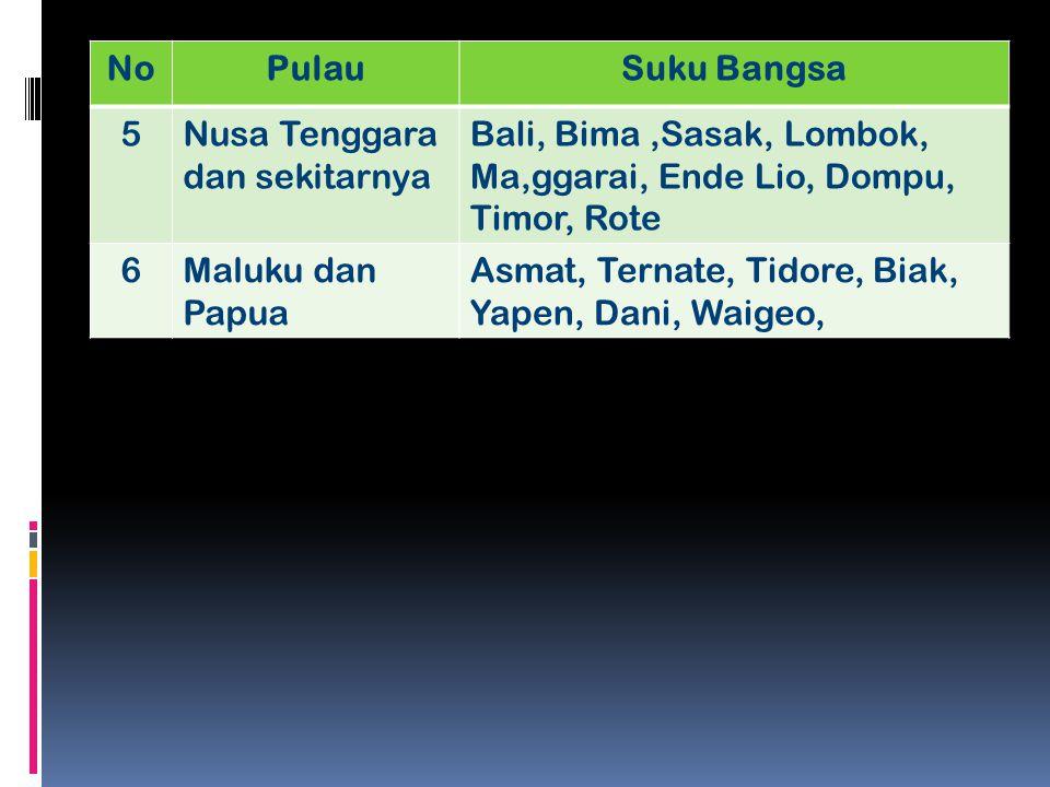 No Pulau. Suku Bangsa. 5. Nusa Tenggara dan sekitarnya. Bali, Bima ,Sasak, Lombok, Ma,ggarai, Ende Lio, Dompu, Timor, Rote.