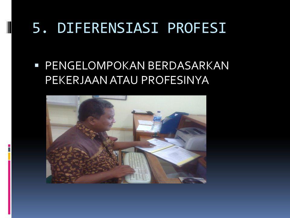 5. DIFERENSIASI PROFESI PENGELOMPOKAN BERDASARKAN PEKERJAAN ATAU PROFESINYA