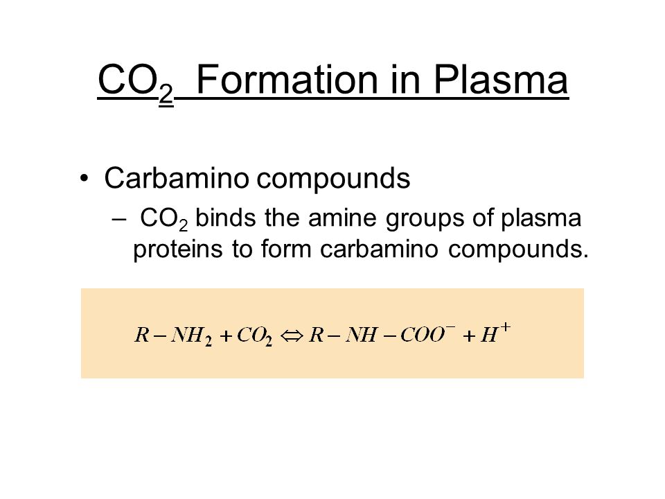 CO2 Formation in Plasma Carbamino compounds