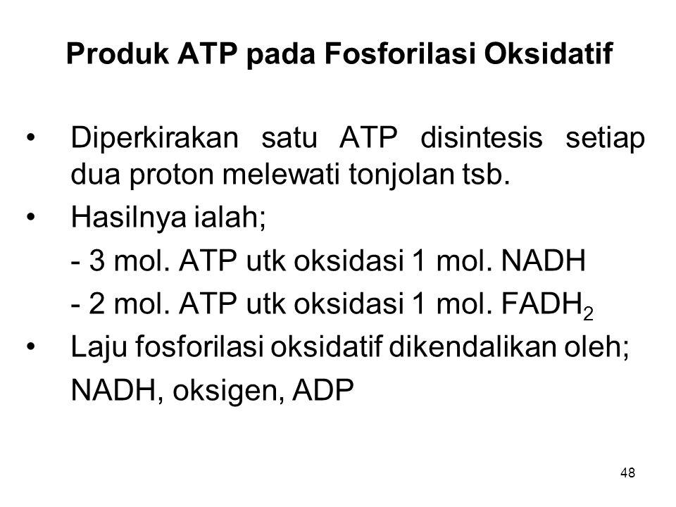 Produk ATP pada Fosforilasi Oksidatif