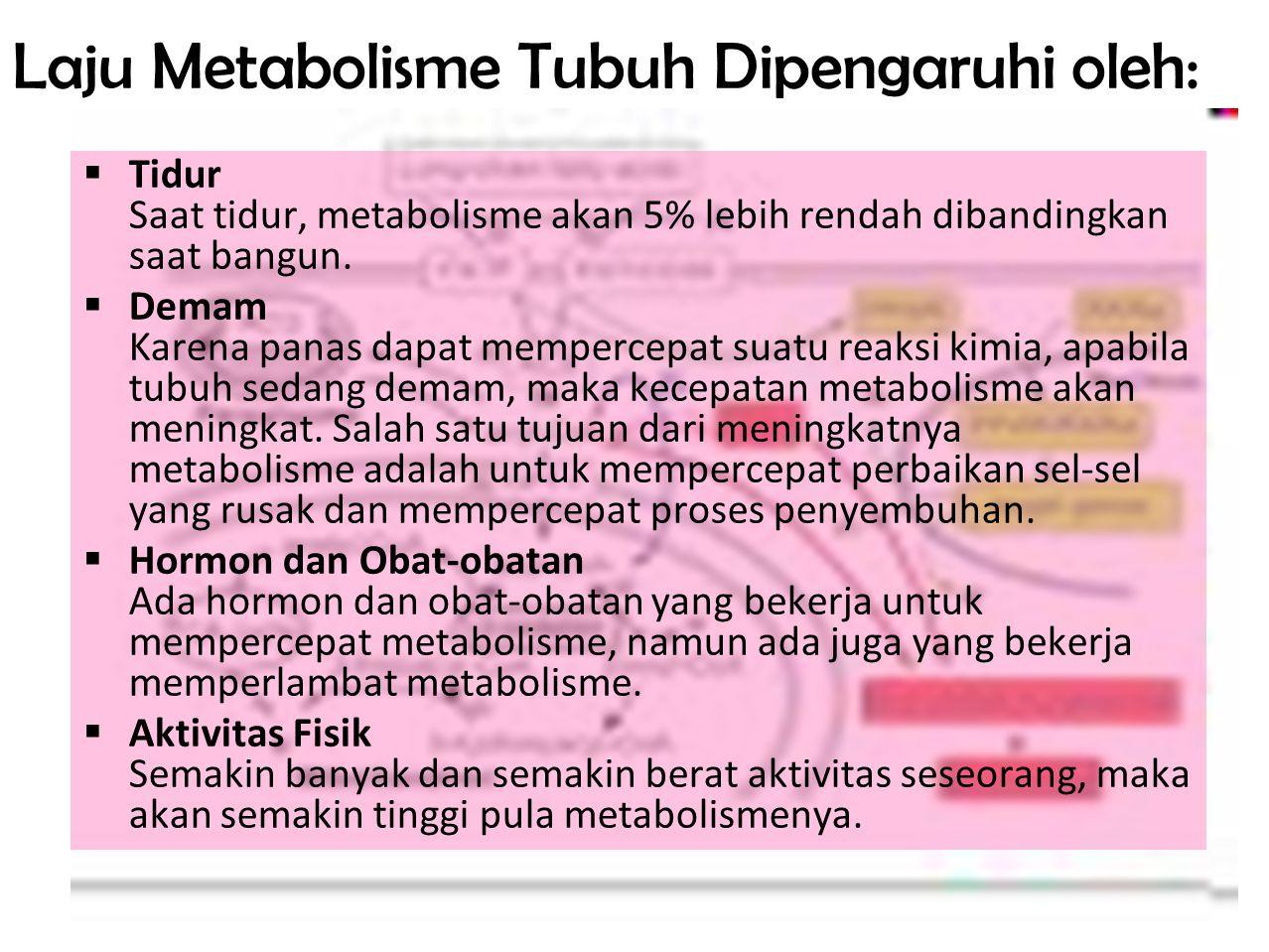Laju Metabolisme Tubuh Dipengaruhi oleh: