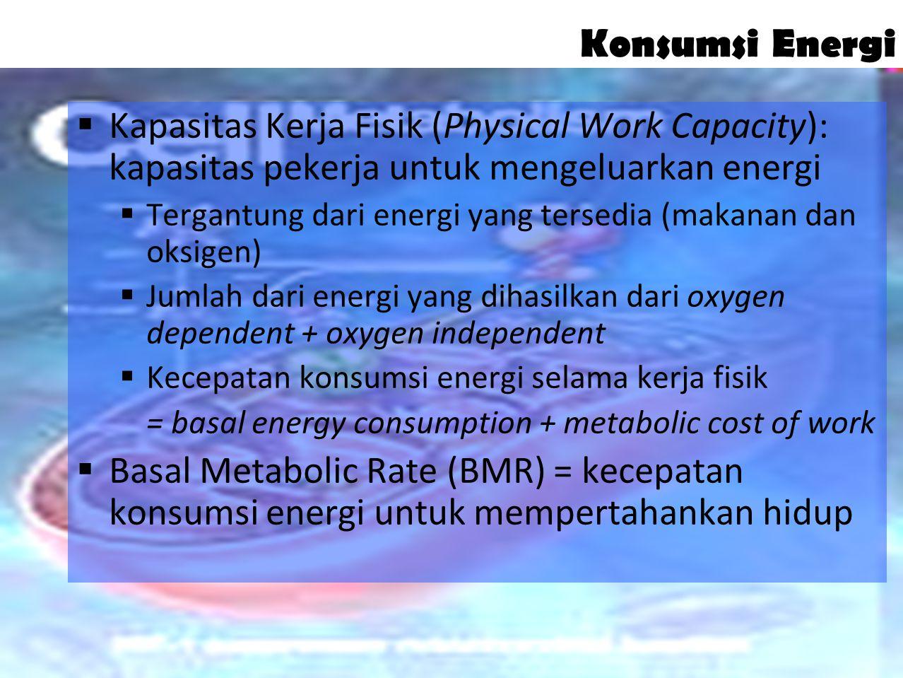 Konsumsi Energi Kapasitas Kerja Fisik (Physical Work Capacity): kapasitas pekerja untuk mengeluarkan energi.