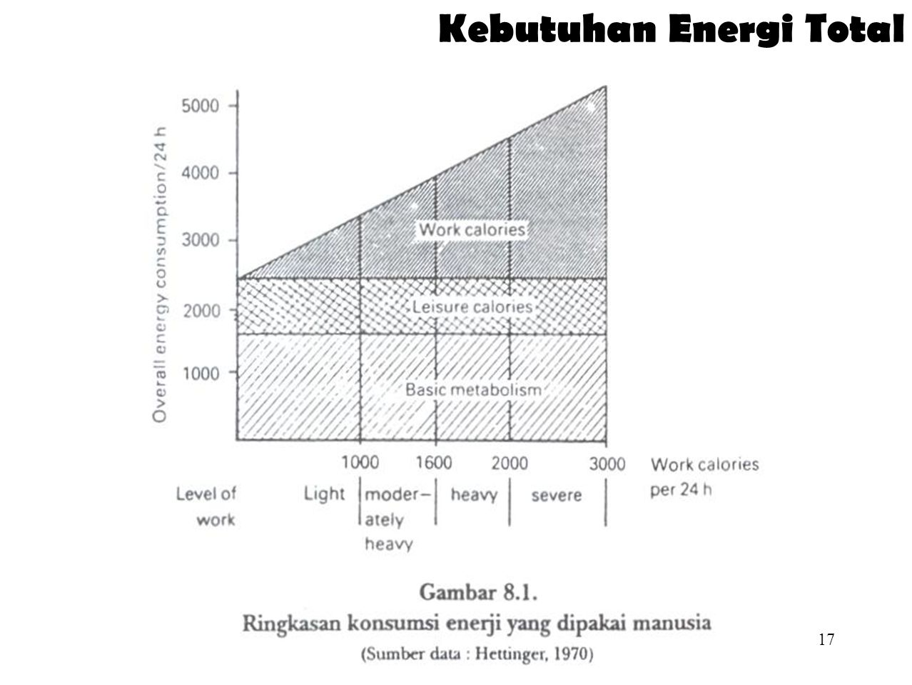 Kebutuhan Energi Total