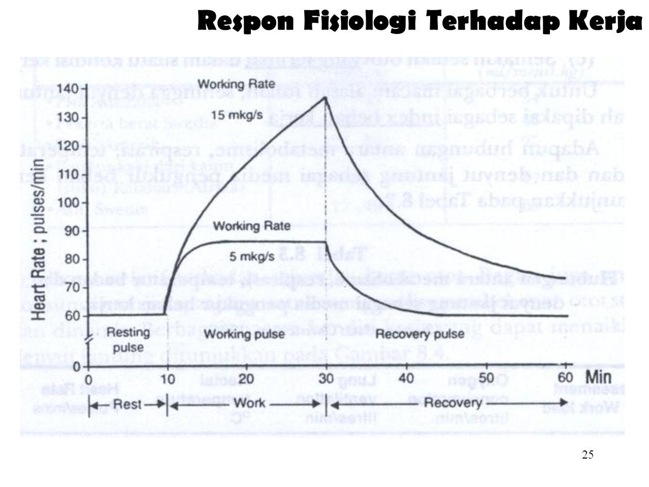 Respon Fisiologi Terhadap Kerja